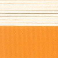 Zebra Clasic | cod 207