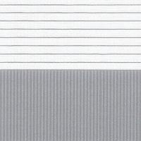 Zebra Clasic | cod-213-2